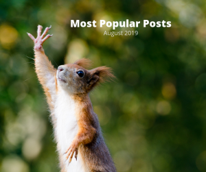"""A red squirrel with its paw in the air and the words, Most Popular Posts August 2019"""""""